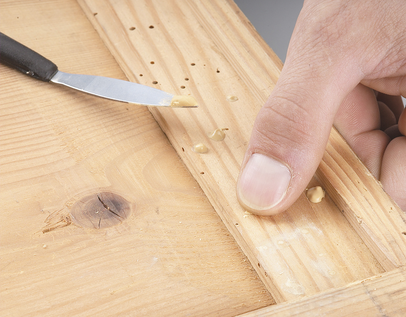 Holzschadlinge Erkennen Bekampfen Vorbeugen Mein Eigenheim